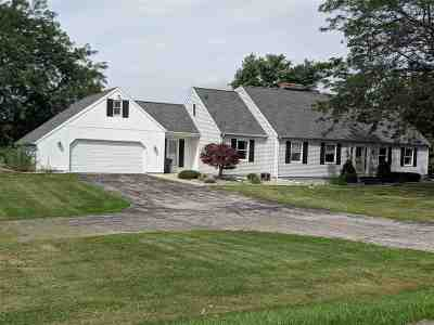 Lenawee County Single Family Home For Sale: 1389 Springville Hwy