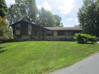 Lenawee County Single Family Home For Sale: 9275 W M 50 Highway