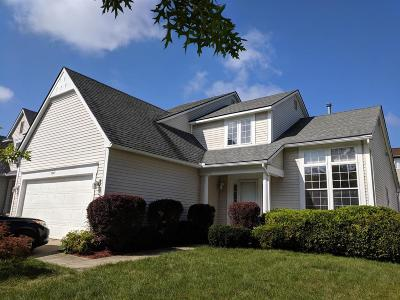 Ann Arbor Single Family Home For Sale: 3205 Aldwych Cir
