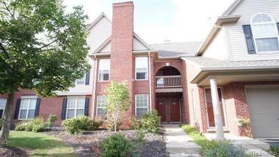 Novi Condo/Townhouse For Sale: 28293 Carlton Way Dr