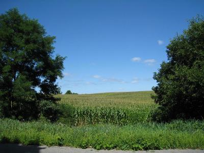 Grass Lake Residential Lots & Land For Sale: 11560 Cady Rd