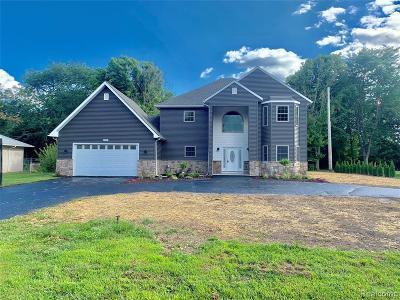 Belleville Single Family Home For Sale: 47515 Denton Rd