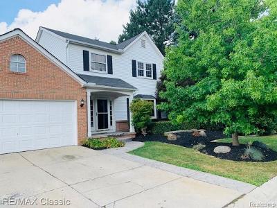 Novi Single Family Home For Sale: 47106 Scarlet Dr S