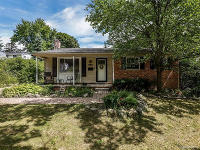 Northville Single Family Home For Sale: 956 Novi St