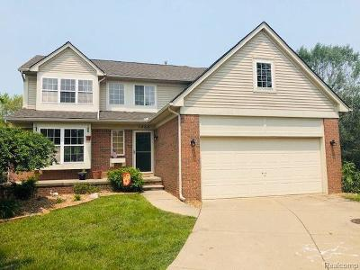 Canton Single Family Home For Sale: 1466 Bayberry Park Cir