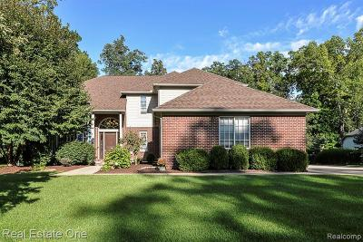 Brighton Single Family Home For Sale: 2307 Shore Line Dr