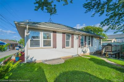 Lake Orion Single Family Home For Sale: 231 Lookout Ln