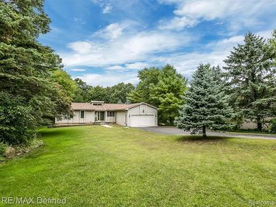 Lake Orion Single Family Home For Sale: 1200 S Baldwin Rd