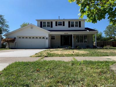 Canton Single Family Home For Sale: 6131 Porteridge Ln
