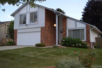 Novi Single Family Home For Sale: 42415 Park Ridge Rd