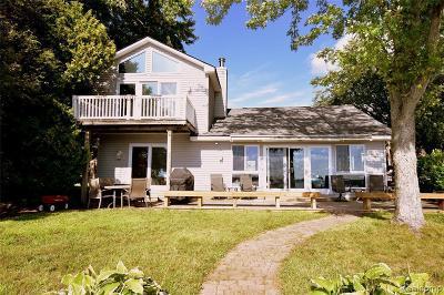 Homes for Sale in Portage Lake, MI