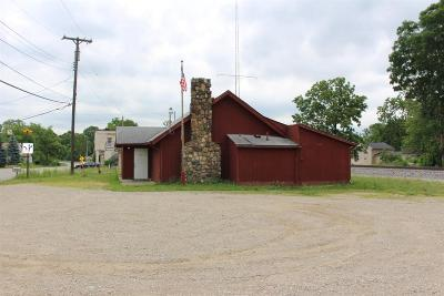 Jackson Commercial/Industrial For Sale: 8739 E Michigan