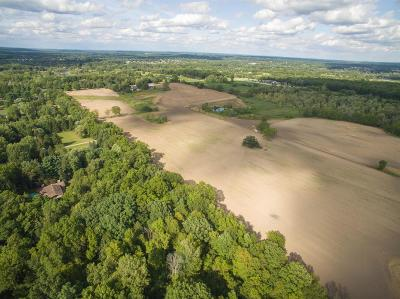 Jackson County, Lenawee County, Hillsdale County, Washtenaw County Residential Lots & Land For Sale: N Steinbach Rd
