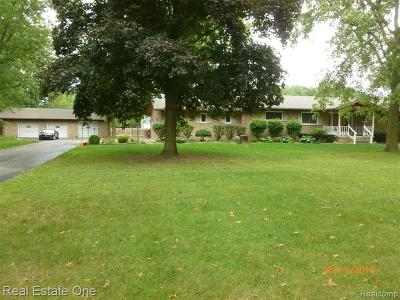 Belleville Single Family Home For Sale: 47160 Willis Rd