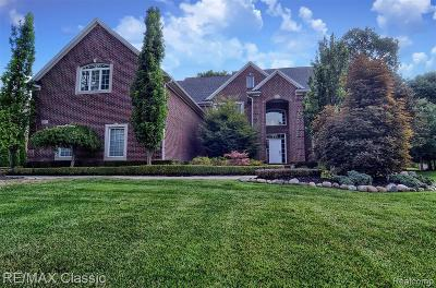 South Lyon Single Family Home For Sale: 23753 Point O Woods Crt