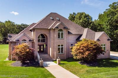 Milford Single Family Home For Sale: 1046 Hunter Crt E