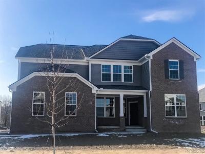 Lake Orion Single Family Home For Sale: 914 Weber Crt