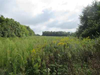 Onsted MI Residential Lots & Land For Sale: $320,000