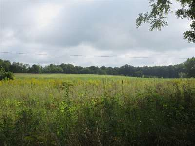 Onsted MI Residential Lots & Land For Sale: $149,000