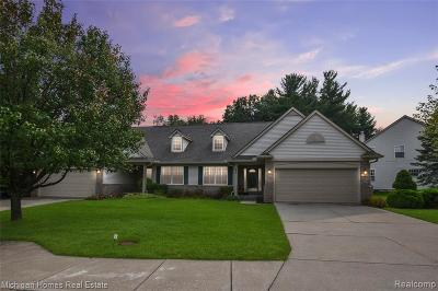 Lake Orion Condo/Townhouse For Sale: 141 Four Seasons Dr
