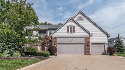 Belleville Single Family Home For Sale: 8855 Stonebridge Ct