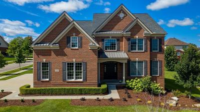 Novi Single Family Home For Sale: 50409 Langley Dr