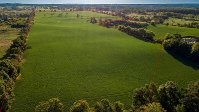 Grass Lake Residential Lots & Land For Sale: Jacob Rd