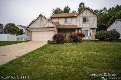 Canton Single Family Home For Sale: 43636 Lancelot Dr