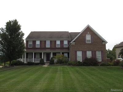 South Lyon Single Family Home For Sale: 23688 Lyon Ridge Dr