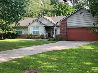 Southfield Single Family Home For Sale: 22471 Brookside Dr