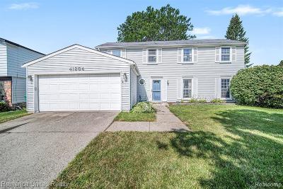 Novi Single Family Home For Sale: 41864 Park Ridge Rd