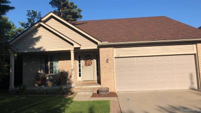 Lake Orion Single Family Home For Sale: 401 Converse Crt