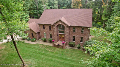 Grand Ledge Single Family Home For Sale: 13167 Riverwoods