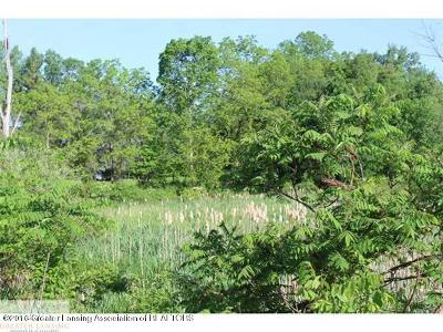Haslett Residential Lots & Land For Sale: Haslett Road