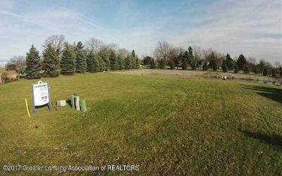 Grand Ledge Residential Lots & Land For Sale: Laurelwood Drive