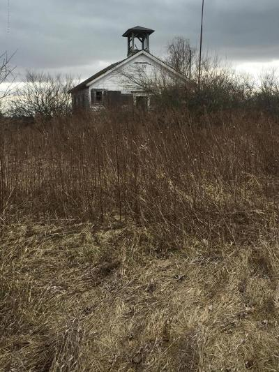 Dewitt Residential Lots & Land For Sale: S Dewitt Road