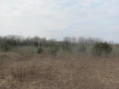 Residential Lots & Land For Sale: Sebewa Creek Ridge