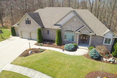 Grand Ledge Single Family Home For Sale: 4294 Foxtail Circle