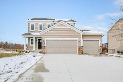 Lansing Single Family Home For Sale: 3770 Danbridge Drive