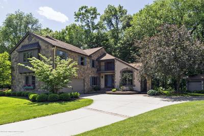 Okemos Single Family Home For Sale: 5205 Whitetail Circle