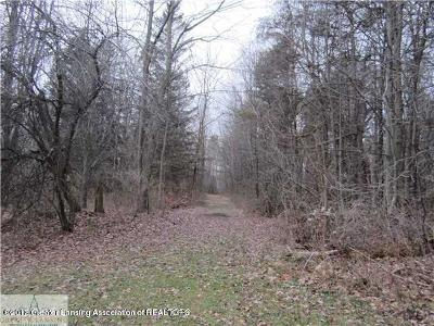 Dewitt Residential Lots & Land For Sale: 12440 S Us Hwy 27
