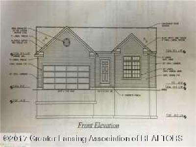 Williamston Single Family Home For Sale: 3101 Pawapi Lane