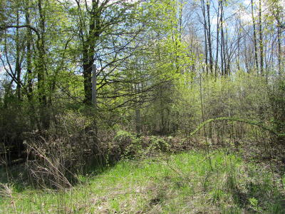 Mulliken Residential Lots & Land For Sale: 3 Green Acres Green
