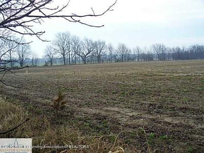Charlotte Residential Lots & Land For Sale: Lots 1, 3-8 Sherman Road