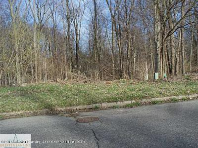 Lansing Residential Lots & Land For Sale: Lot 118 Williamsburg Road