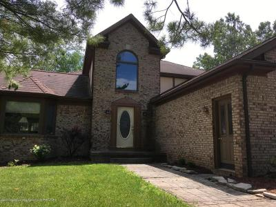 Okemos Single Family Home For Sale: 3794 Chippendale Circle