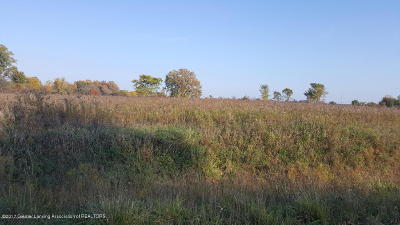 Dewitt Residential Lots & Land For Sale: S Lowell Road