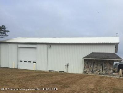 Grand Ledge Commercial For Sale: 5555 Davis Highway