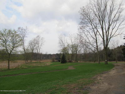 Haslett Residential Lots & Land For Sale: 6269 Green Road