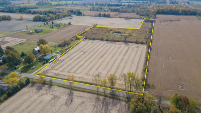 Grand Ledge Residential Lots & Land For Sale: 888 W St. Joe Highway